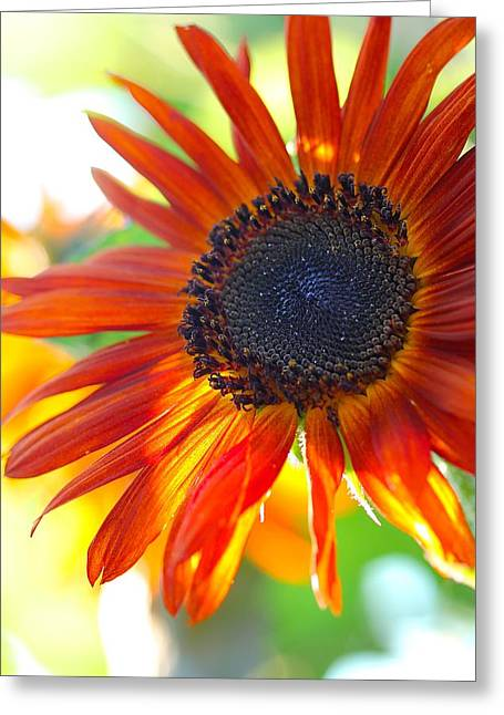 Soul On Fire Greeting Card