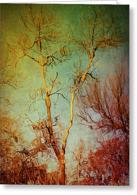 Souls Of Trees Greeting Card