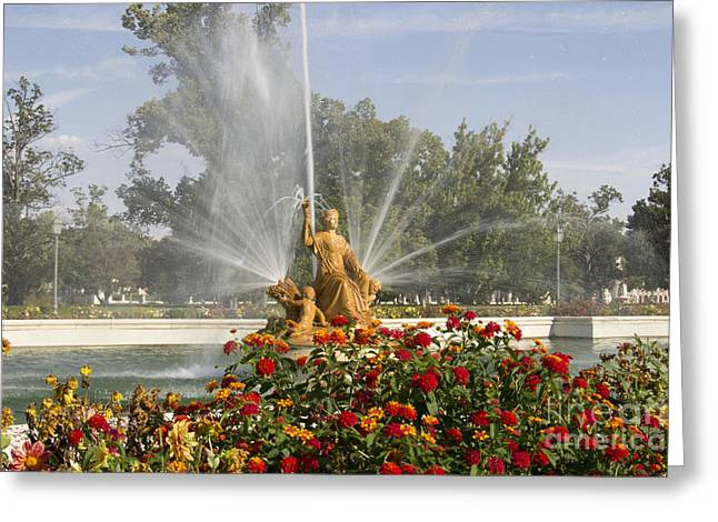 Source In Aranjuez Greeting Card