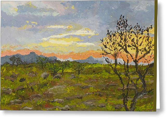 South African Sunset Greeting Card by Diane Arlitt