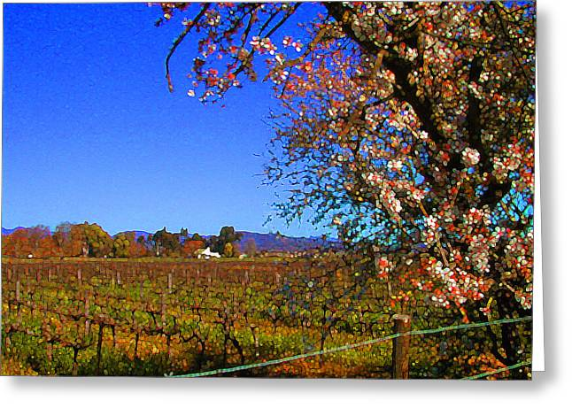 South African Winelands 3 Greeting Card by Lenore Senior and Constance Widen