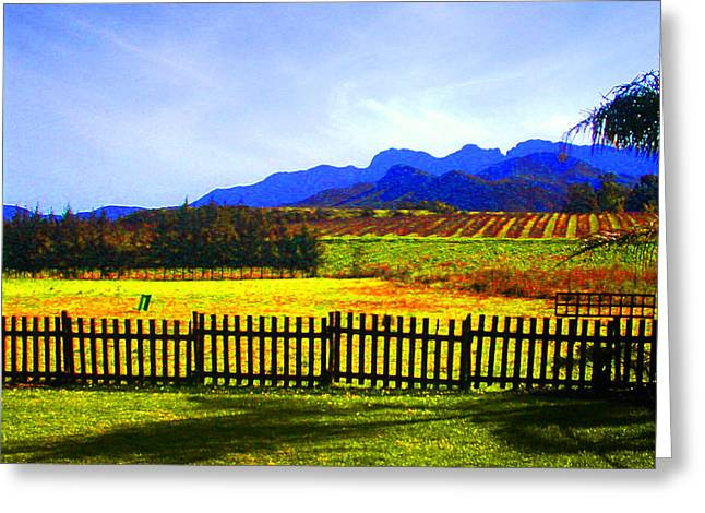 South African Winelands Greeting Card by Lenore Senior and Constance Widen