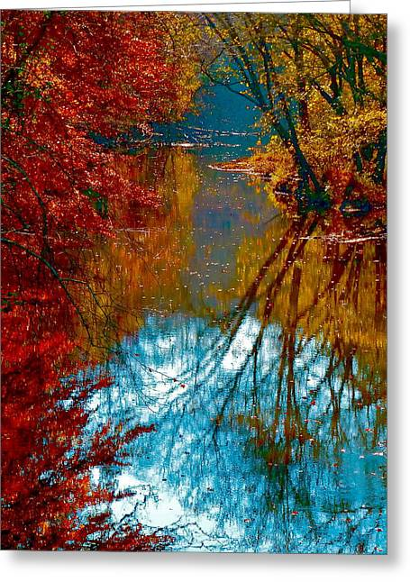 South Anna River Reflections Greeting Card