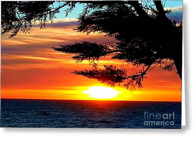 Greeting Card featuring the photograph South Bay Sunset by Steed Edwards