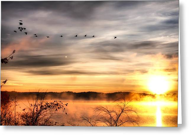South Carolina Morning Greeting Card by Lynne Jenkins