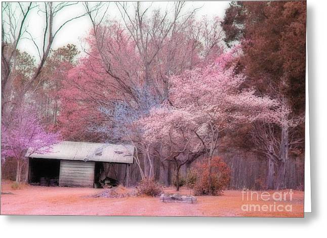 South Carolina Pink Fall Trees Nature Landscape Greeting Card by Kathy Fornal