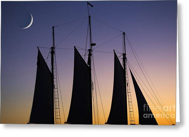 South Carolina Schooner Sunset Greeting Card