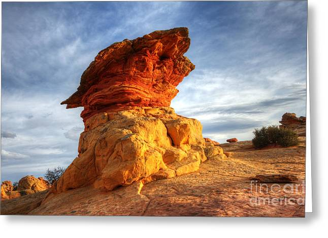 South Coyote Buttes 7 Greeting Card by Bob Christopher