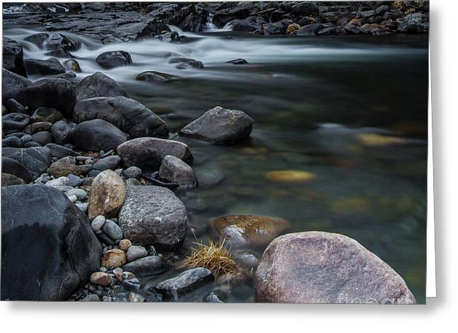 South Fork American River Greeting Card by Mitch Shindelbower