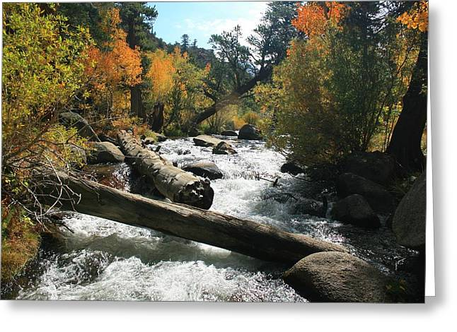 South Fork Bishop Creek Greeting Card