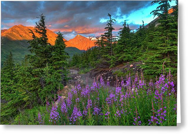 South Fork Trail Near Eagle River Greeting Card