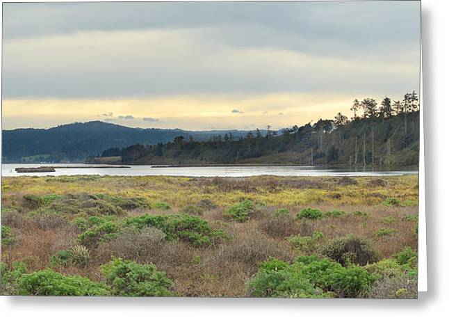 South Humboldt Bay Greeting Card