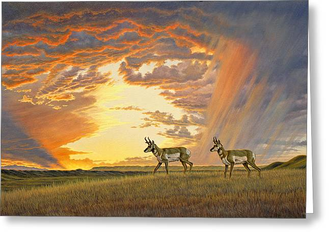 South Of Lander Greeting Card by Paul Krapf