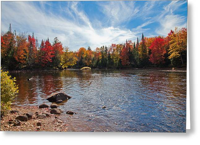 South Of The Lock And Dam In Autumn Greeting Card by David Patterson