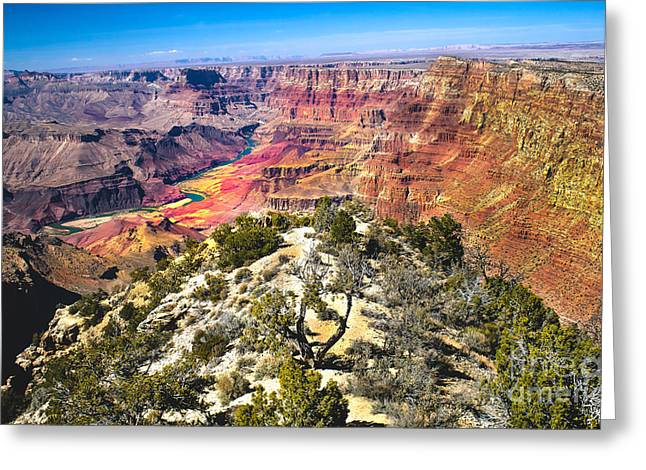 South Rim From The Butte Greeting Card