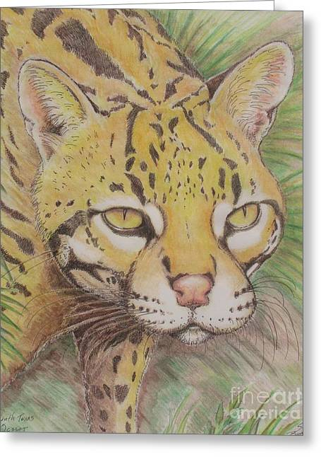 South Texas Ocelot Greeting Card