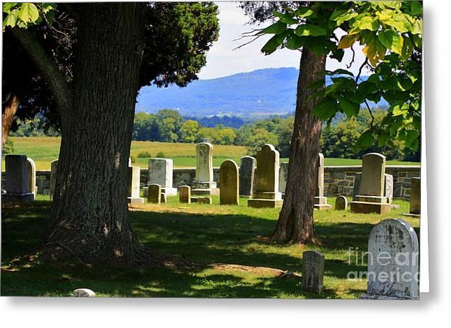 South West Corner Of Mumma Cemetery Greeting Card by Patti Whitten