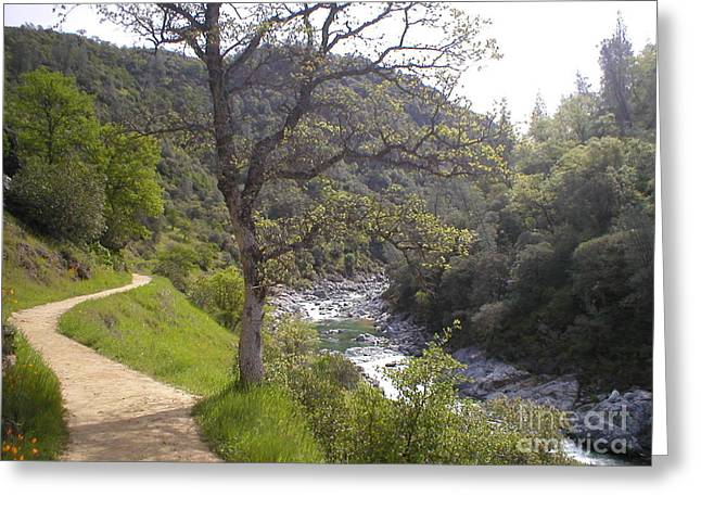 South Yuba Trail Greeting Card