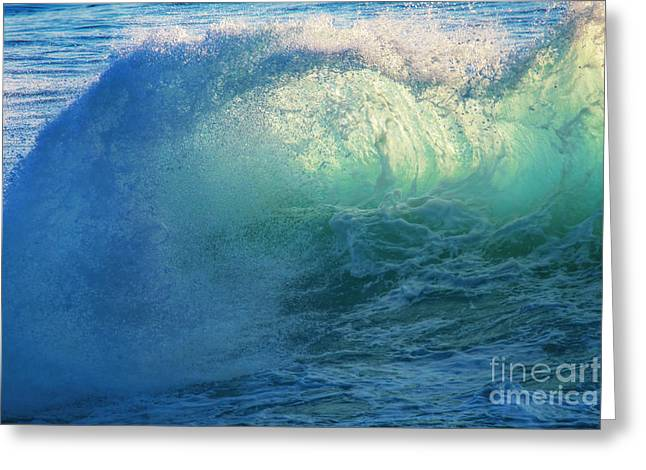 Southern Curl Greeting Card by Marco Crupi