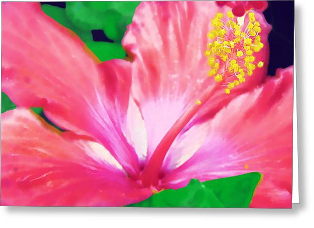 Greeting Card featuring the photograph Southern Hibiscus by Diane Miller