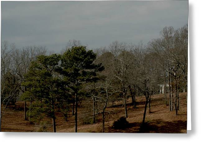 Greeting Card featuring the photograph Southern Landscape by Lesa Fine