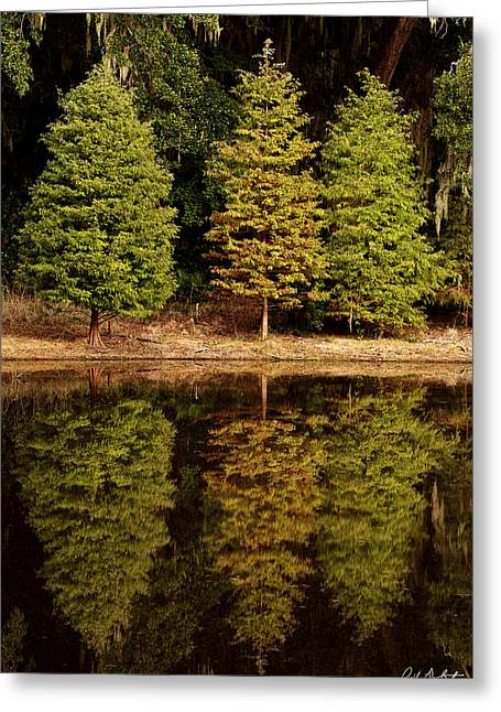 Southern Reflections Greeting Card by Phill Doherty