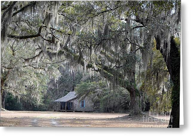 Al Powell Photography Usa Greeting Cards - Southern Shade Greeting Card by Al Powell Photography USA