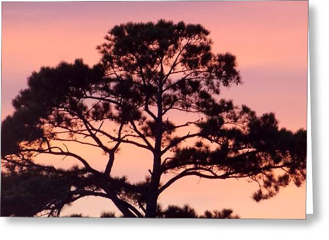 Southern Sundown Greeting Card