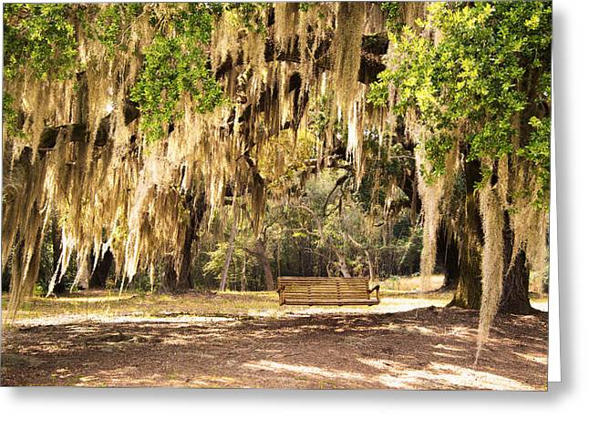 Southern Tree Greeting Card