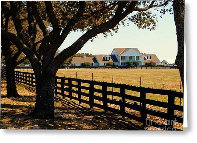 Southfork Ranch - Across The Pasture Greeting Card