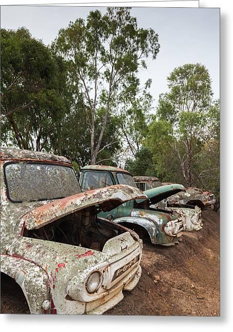 Southwest Australia, Boyup Brook, Old Greeting Card by Walter Bibikow
