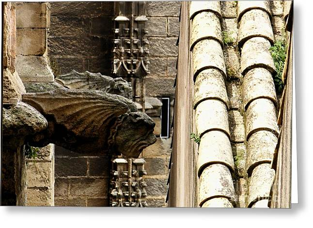Spain - Seville Cathedral - Gargoyles Greeting Card by Jacqueline M Lewis