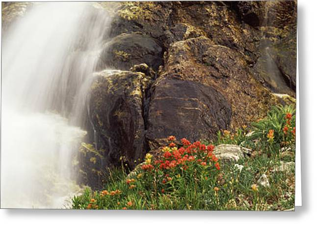 Spalding Falls Grand Teton National Greeting Card by Panoramic Images