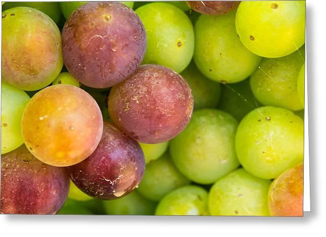 Spanish Grapes Macro Greeting Card by Kaleidoscopik Photography