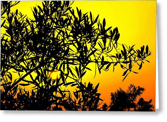 Spanish Sunshine - Espana Greeting Card by Jacqueline M Lewis