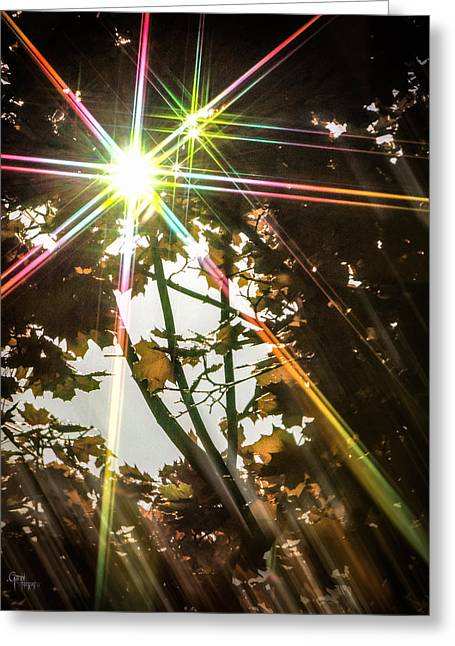 Sparkling Dawn -twin Greeting Card