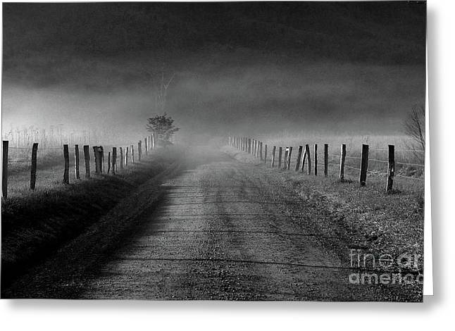 Sparks Lane In Black And White Greeting Card by Douglas Stucky