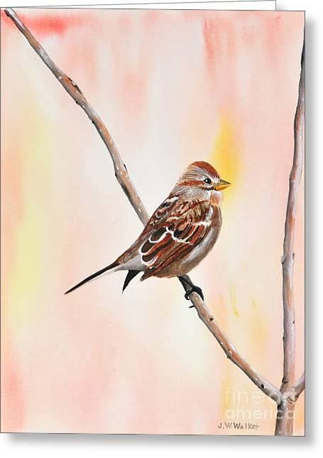 Sparrow I Greeting Card by John W Walker