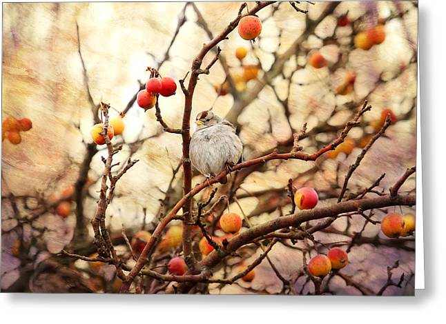 Sparrow In A Crab Apple Tree Greeting Card by Peggy Collins