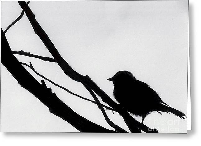 Greeting Card featuring the drawing Sparrow In A Gray Sky by D Hackett