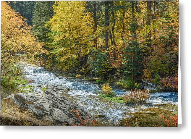 Spearfish Creek Autumn Greeting Card