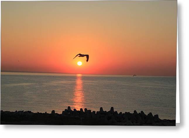 Special Sunrise Greeting Card by Gavenea Gheorghe Sorin