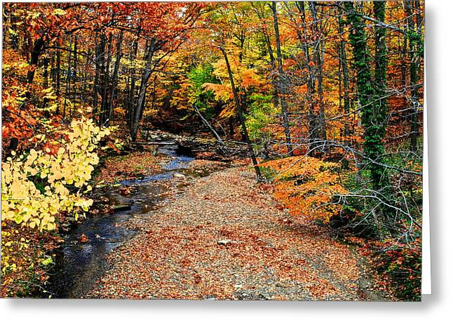 Spectrum Of Color Greeting Card by Frozen in Time Fine Art Photography
