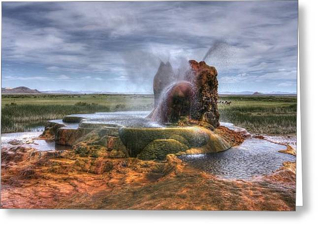 Spewing Minerals At Fly Geyser Greeting Card