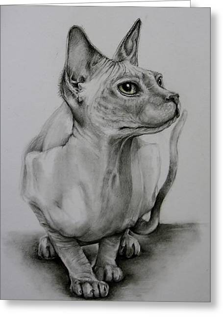 Sphynx Greeting Card by Jean Cormier