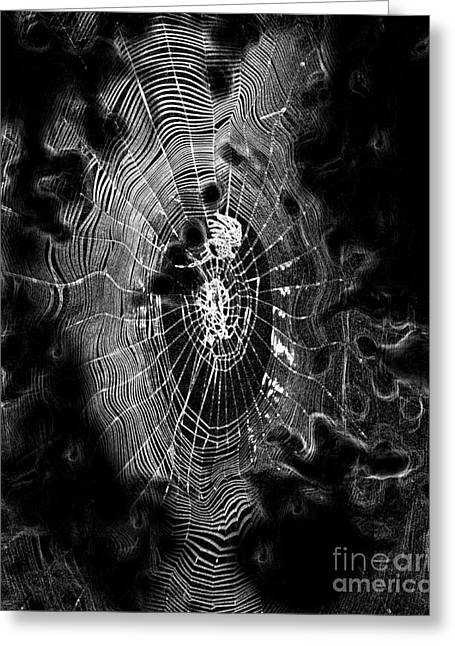 Spider Noir Greeting Card