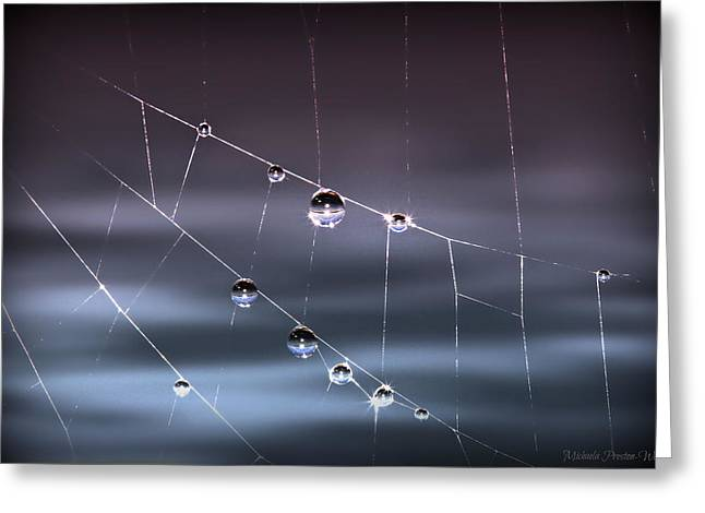 Spider Pearls Greeting Card by Michaela Preston