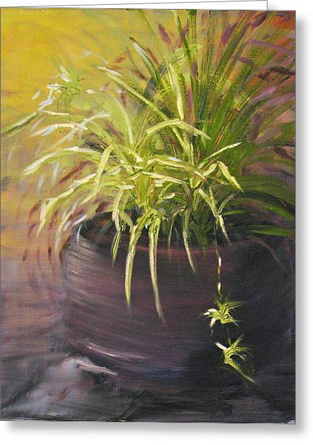 Spider Plant Greeting Card by Sherry Robinson