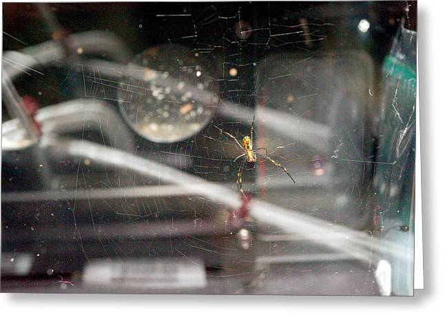 Spider Weaving A Web In Space Greeting Card by Nasa