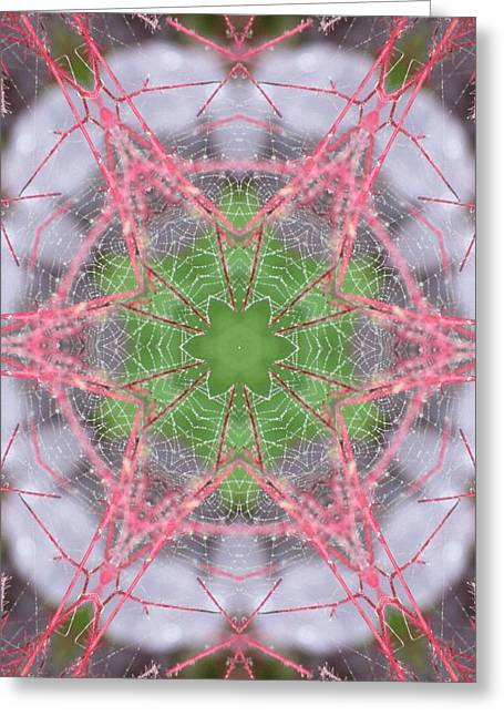 Greeting Card featuring the digital art Spider Web On Smokebush by Trina Stephenson